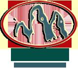 贺州市联达nba比赛直播视频直播球迷网有限公司